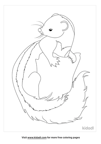 skunk coloring page-1-lg.png