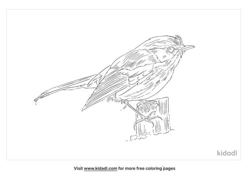 slaty-blue-flycatcher-coloring-page
