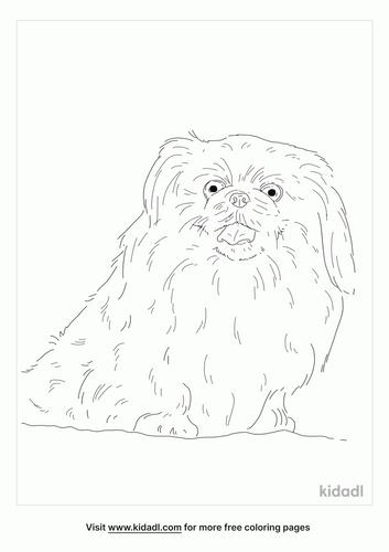 sleeve-pekingese-coloring-page