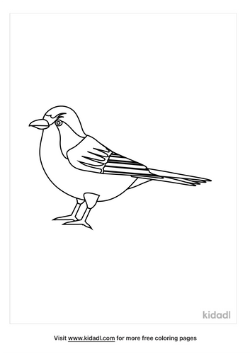 sparrow-coloring-pages-1-lg.png
