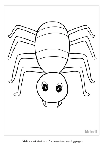 spider coloring pages-2-lg.png