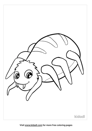 spider coloring pages-3-lg.png