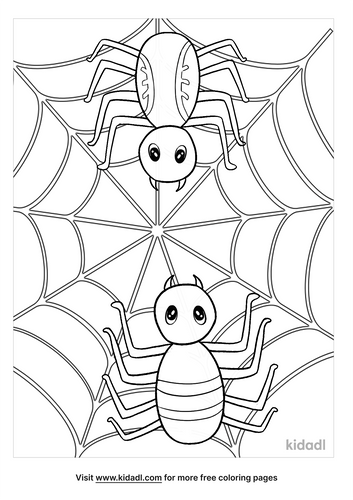 spider coloring pages-5-lg.png