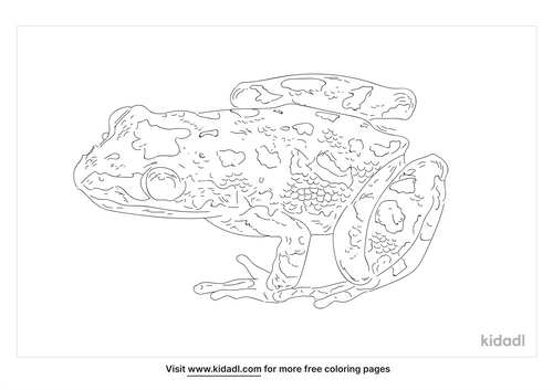 spotted-chorus-frog-coloring-page