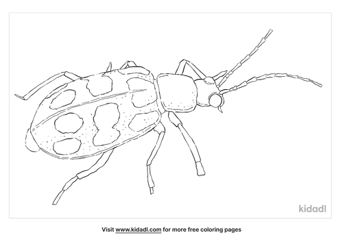 spotted-cucumber-beetle-coloring-page