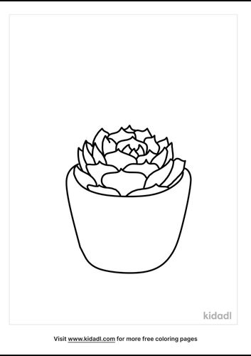 succulent-coloring-page-1-lg.png