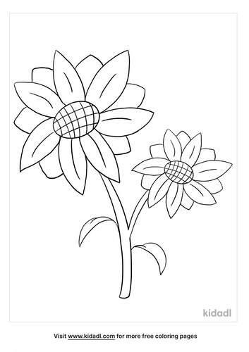 sunflower coloring page_3_lg.png