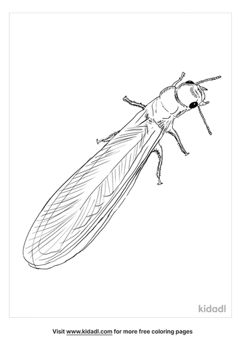 termite-coloring-page