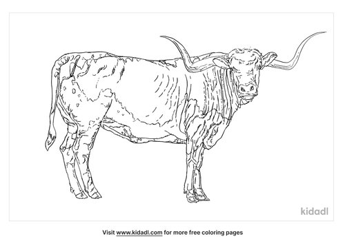 texas-longhorn-coloring-page