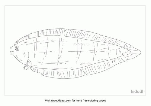 tonguefish-coloring-page