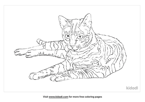 toyger-coloring-page