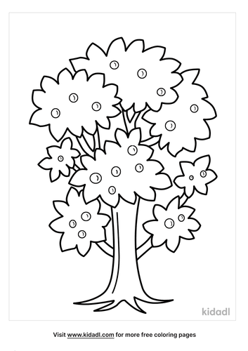 tree outline-2-lg.png