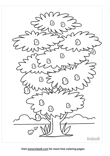 tree outline-4-lg.png