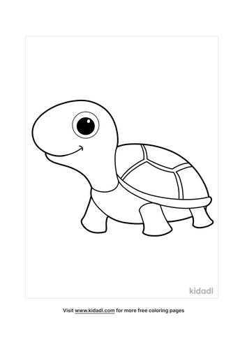 turtle coloring pages-2-lg.png