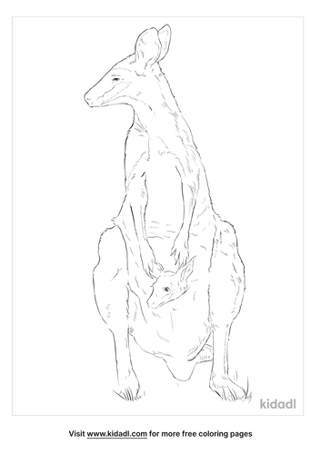 whiptail-wallaby-coloring-page