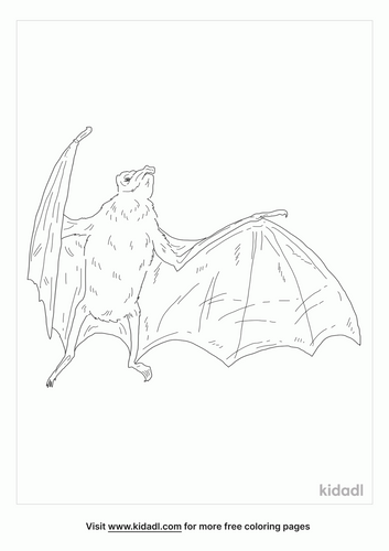 white-winged-vampire-bat-coloring-page