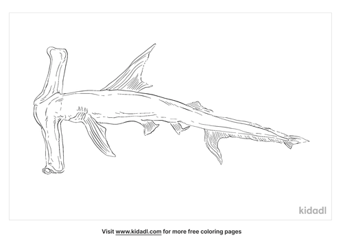 winghead-shark-coloring-page