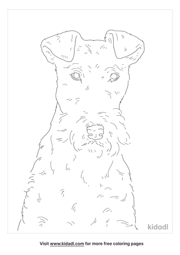 wire-fox-terrier-coloring-page