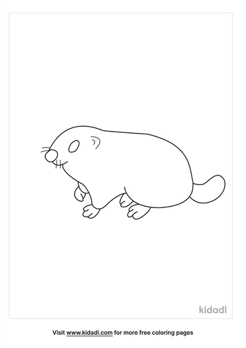 woodchuck-coloring-page.png