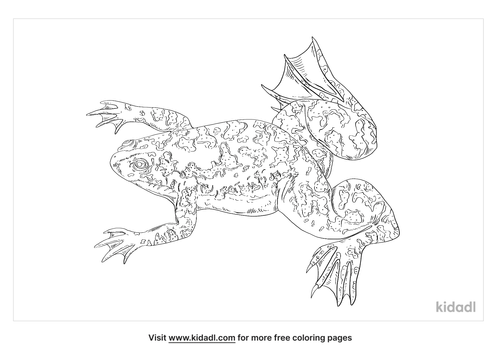 xenopus-coloring-page