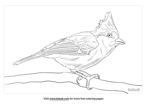yellow-tit-coloring-page