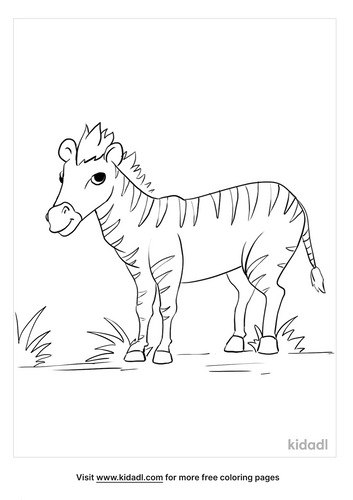 zebra coloring pages_3_lg.png
